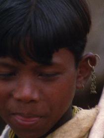 L'Inde fantôme, réflexions sur un voyage : En marge de l'Inde