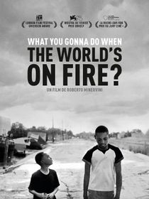 What You Gonna Do When the World's on Fire ?