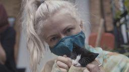 The Deep End: fans de L'extrême : Les amis des chats