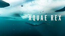 Aquae Rex