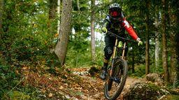 Mountain Bike Insights
