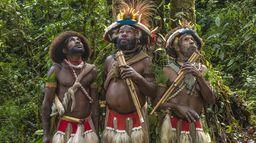 Frères des arbres : L'appel d'un chef papou