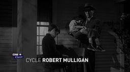 Cycle Robert Mulligan