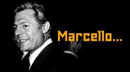 Marcello...