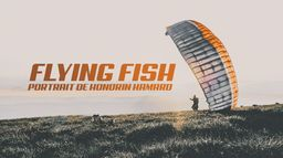 Flying fish portrait...
