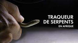 Traqueur de serpents en Afrique du Sud : Face au mamba