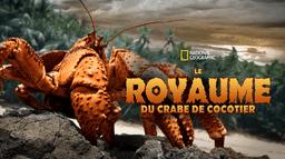 Le royaume du crabe de cocotier