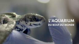 L'aquarium du bout du monde