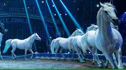 Gala du 44e Festival du Cirque de Monte-Carlo