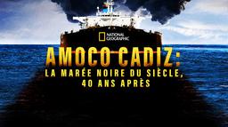 Amoco Cadiz: la marée noire du siècle, 40 ans après