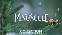 Saga Minuscule