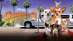 Le Chihuahua de Beverly Hills 2: La Famille Vient de S'Agrandir