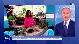 Jardin : Faire un terrarium en moins de 10 min, c'est possible !