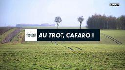 Au trot, Cafaro ! : Ligue 1 Uber Eats
