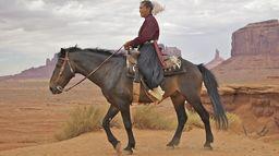 Prédateur en terres indiennes