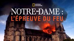 Notre-Dame: L'épreuve du feu