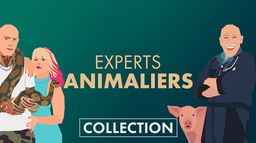 Experts animaliers
