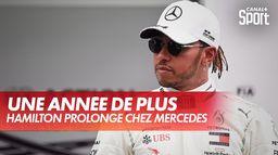 Une année de plus chez Mercedes : Lewis Hamilton
