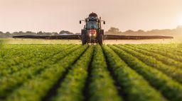 Débat : Comment faire sans pesticides ?