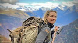 Derniers mouflons des Alpes?