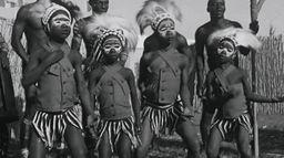 Orchestra Baobab, une autre histoire du Sénégal
