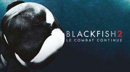 Blackfish 2 : le combat continue