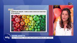 Votre assiette : Les tomates stars incontournables de l'été !