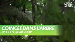 Incroyable la balle coincée dans l'arbre : US Open 4ème tour