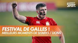 Les meilleurs moments de Sharks / Lions : Rugby