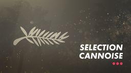 Sélection Cannoise