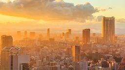 La face cachée de Tokyo