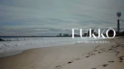 Fukko, histoires de résilience