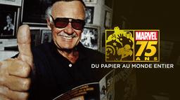 Marvel : 75 ans, du papier au monde entier