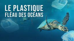 Le plastique, fléau des océans