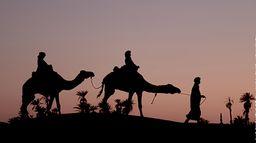 Nez au Maroc