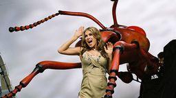 L'île des insectes mutants