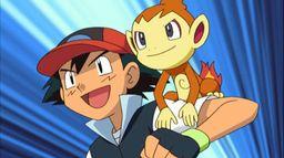 Pokémon XII