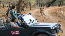 Planète safari - Saison 2