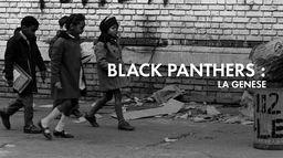 Black Panthers : la genèse