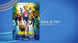 Bonus - Birds of prey