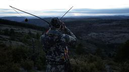 Le mouflon à l'arc traditionnel