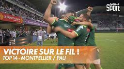 Victoire paloise sur le fil ! : Montpellier / Pau