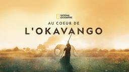 Au coeur de l'Okavango