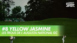 Trou 8 - Yellow Jasmine : Augusta National Golf Club