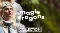 Magie et dragons