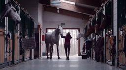 Czy koń wie, że wygrał