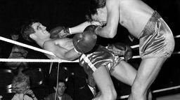 Jean-Paul Belmondo avait comme grande passion la boxe