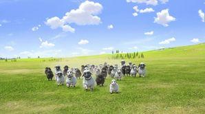 Drôle de saute-mouton