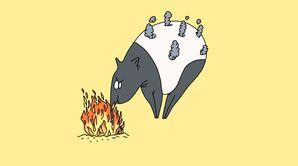 Le tapiromane