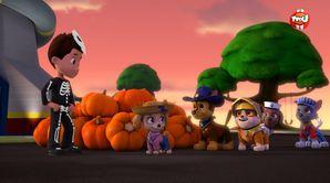 La Pat'Patrouille sauve Halloween